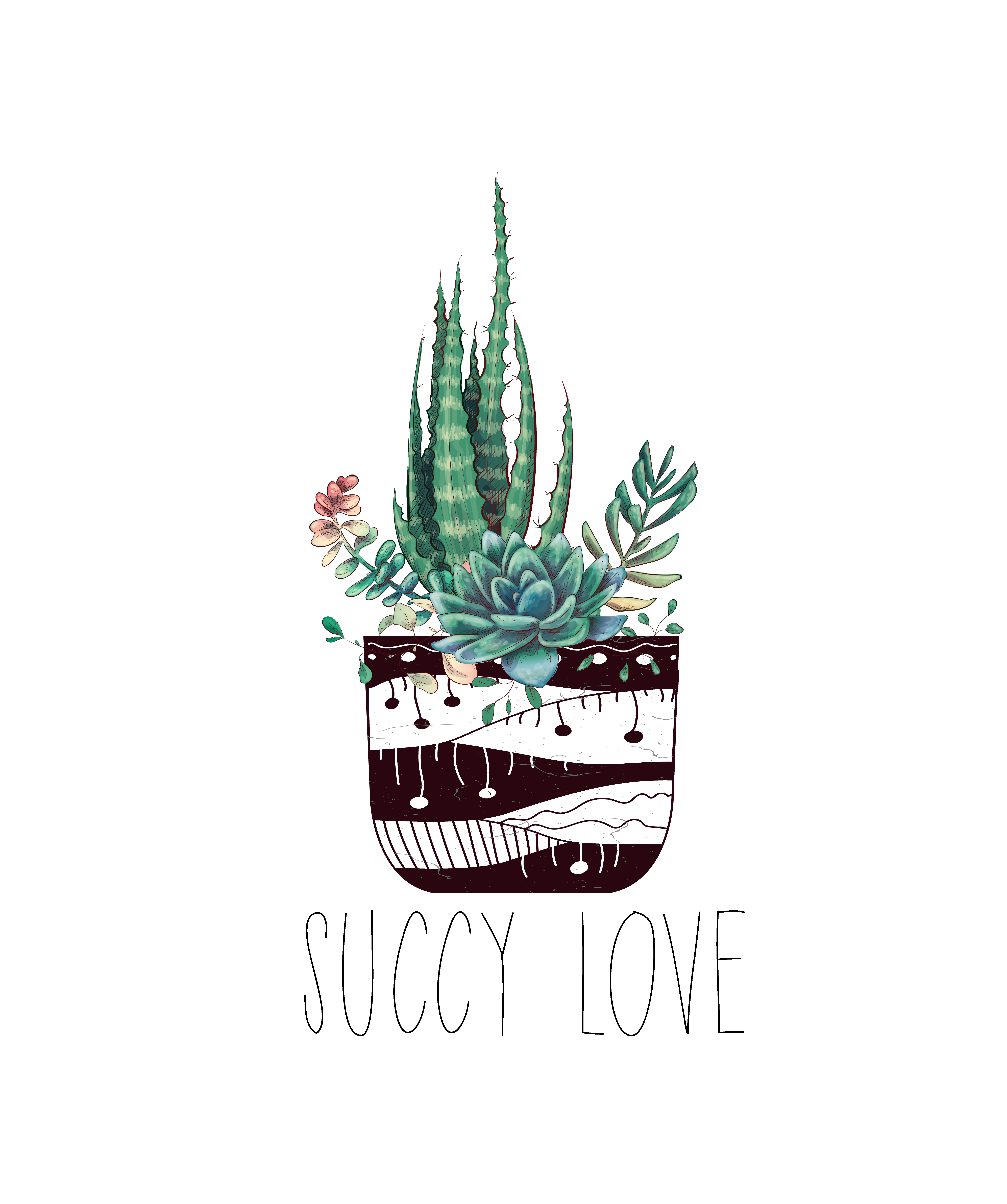 Succy Love